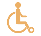 icon_disability
